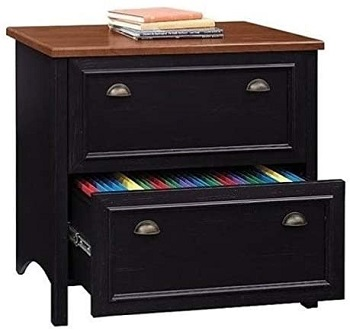 Bowery Hill 2 Drawer Lateral Wood File Cabinet review