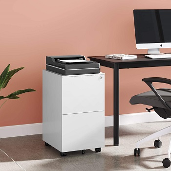 DEVAISE 2-Drawer Mobile File Cabinet review