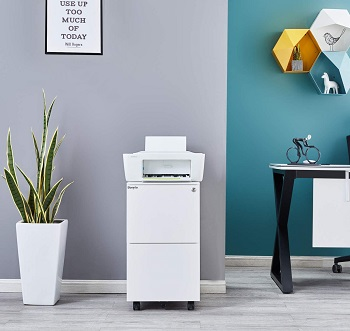 Bonnlo 2-Drawer Rolling File Cabinet review