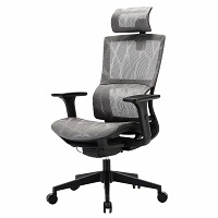 BEST ERGONOMIC OFFICE CHAIR FOR BACK AND NECK PAIN Summary