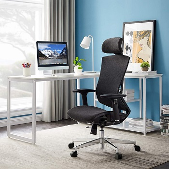 BEST FOR STUDY BACK POSTURE Tribesigns Chair