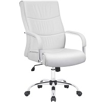 BEST WITH BACK SUPPORT ALL WHITE DESK CHAIR Summary