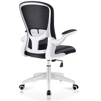 Best Cheap Back Posture Chair Summary