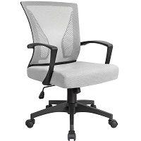 Best Computer Comfortable Cheap Chair Summary