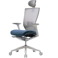 Best Ergo Posture For Back Chair Summary