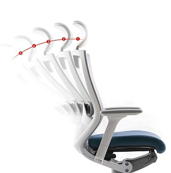 Best Ergo Posture For Back Chair