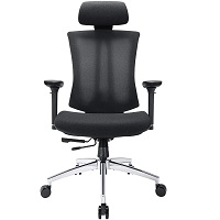 Best For Study Back Posture Chair Summary