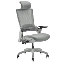 Clatina Adjustable Chair Summary