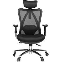 Duramont Ergonomic Adjustable Chair Summary
