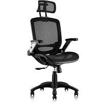 Gabrylly Desk Chair Summary