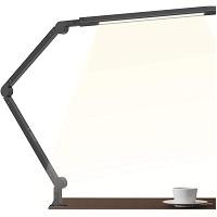 Joly Joy LED Desk Lamp Picks