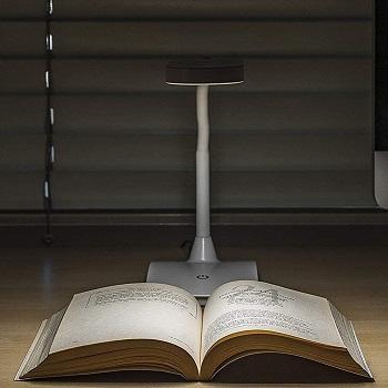 TW Lighting Ivy LED Desk Lamp