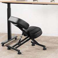Vivo Dragonn Kneeling Chair Summary