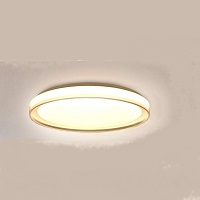 BEST CEILING LIGHT FOR HOME OFFICE Picks