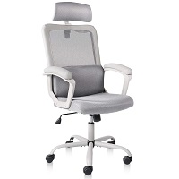 BEST CHEAP HIGH-BACK OFFICE CHAIR WITH LUMBAR SUPPORT Summary