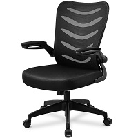 BEST CHEAP OFFICE CHAIR FOR SHORT PERSON WITH BACK PAIN Summary
