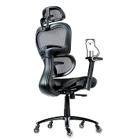 BEST ERGONOMIC COMFORTABLE CHAIR FOR BACK PAIN Summary