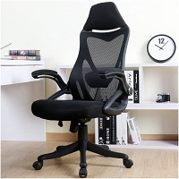 BEST ERGONOMIC HIGH-BACK OFFICE CHAIR WITH LUMBAR SUPPORT Summary