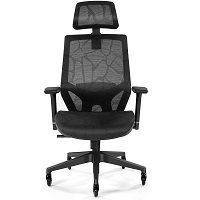 BEST FOR LOWER BACK COMFORTABLE CHAIR FOR BACK PAIN Summary