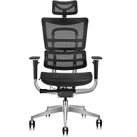 BEST FOR STUDY CHAIR FOR LOWER BACK AND HIP PAIN Summary