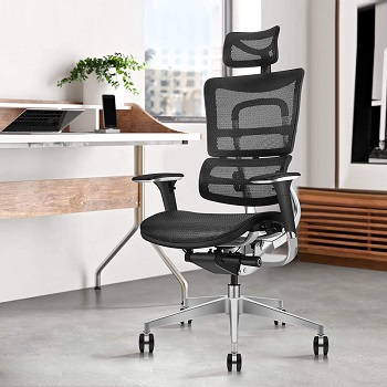 BEST FOR STUDY CHAIR FOR LOWER BACK AND HIP PAIN