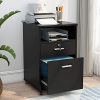 BEST HOME OFFICE CHEAP 2-DRAWER FILE CABINET picks