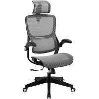 BEST MESH HIGH BACK OFFICE CHAIR WITH ADJUSTABLE ARMS Summary