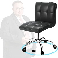 BEST OF BEST ERGONOMIC TASK CHAIR NO ARMS Summary