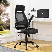 BEST OF BEST HIGH BACK OFFICE CHAIR WITH ADJUSTABLE ARMS Summary