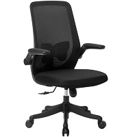 BEST WITH ARMRESTS OFFICE CHAIR FOR LOWER BACK PAIN UNDER $300 Summary