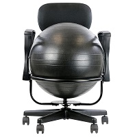 BEST WITH BACK SUPPORT EXERCISE BALL FOR DESK Summary