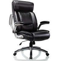 BEST WITH BACK SUPPORT HIGH BACK OFFICE CHAIR WITH ADJUSTABLE ARMS Summary