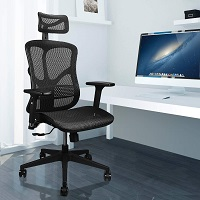BEST WITH BACK SUPPORT HIGH-BACK OFFICE CHAIR WITH HEADREST Summary