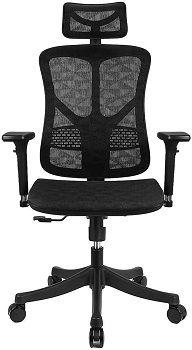 BEST WITH BACK SUPPORT HIGH-BACK OFFICE CHAIR WITH HEADREST