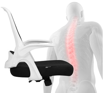 BEST WITH BACK SUPPORT OFFICE CHAIR FOR BACK PAIN