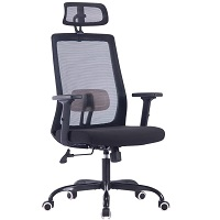 BEST WITH BACK SUPPORT OFFICE CHAIR FOR LOWER BACK PAIN UNDER $300 Summary
