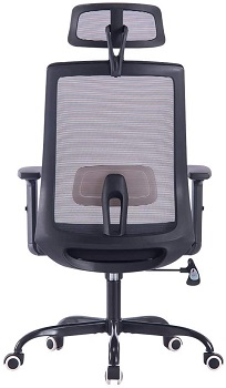 BEST WITH BACK SUPPORT OFFICE CHAIR FOR LOWER BACK PAIN UNDER $300