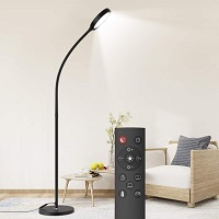 BEST WITH REMOTE CONTROL FLOOR READING LIGHT Picks