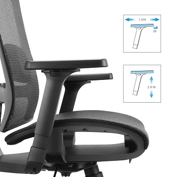Bilkoh Ergonomic Computer Office Chair