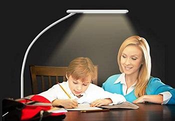 Bolowei LED Desk Lamp