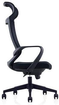 Duduo Art 193A Mesh Ergonomic Chair