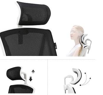 Hbada HBD001 Ergonomic Home Chair