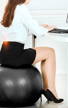 Mind Body Future Exercise Ball Chair