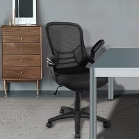 BEST CHEAP ERGONOMIC OFFICE CHAIR FOR LOWER BACK PAIN Summary