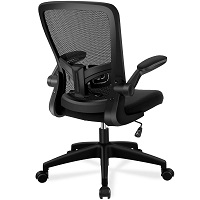 BEST OF BEST LOW-BACK OFFICE CHAIR WITH ARMS Summary
