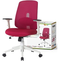 BEST ERGONOMIC LOW-BACK OFFICE CHAIR WITH ARMS Summary