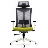 BEST FOR STUDY OFFICE CHAIR FOR LOWER BACK PAIN Summary