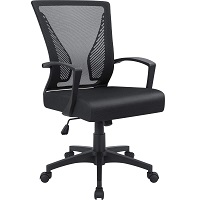 BEST OF BEST MESH CHAIR BACK SUPPORT Summary