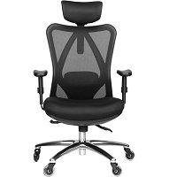 BEST OFFICE COCCYX CHAIR Summary