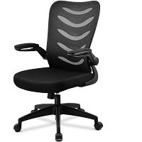 BEST WITH BACK SUPPORT CHEAP DESK CHAIR WITH ARMS Summary